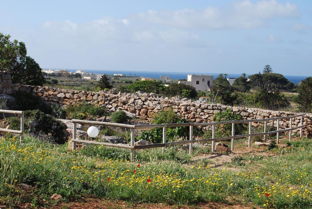 La vista davanti alla villa. Il giardino ipogeo