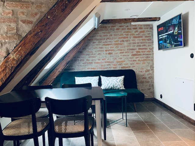 Fantastic Old Town Apartment