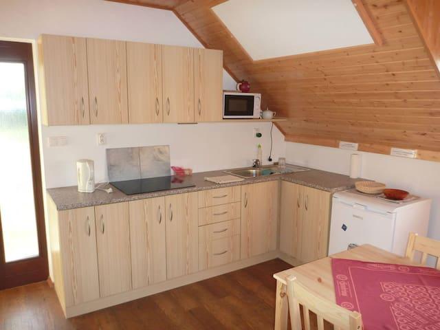 Ubytování ve vinném sklípku - Horní Věstonice 86  - House