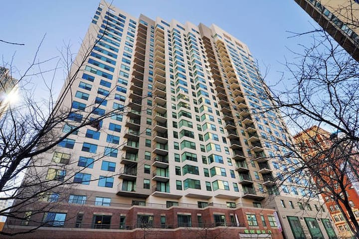 Roomy 2BR in the Center of Chicago. The Loop (402)