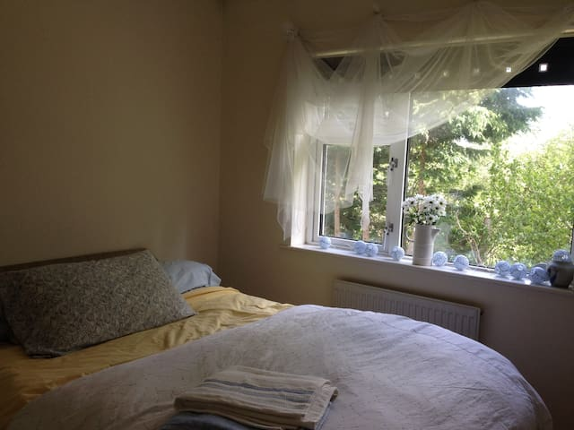 double bed in galway - Galway - Hus