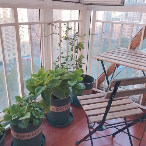 有个小阳台,可以在阳台抽烟(但请关客厅的门) 有烟灰缸自行使用 盆栽阿姨会来浇花