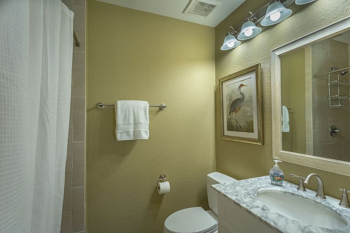 Master Full Bathroom