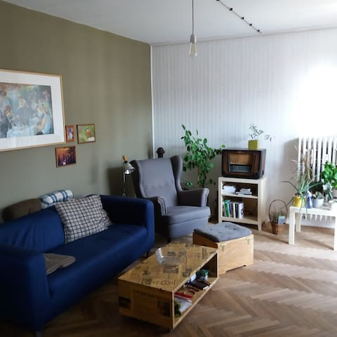 Room in old town near river. - Bratislava - Apartment