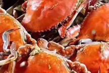 烤螃蟹,又新鲜又大