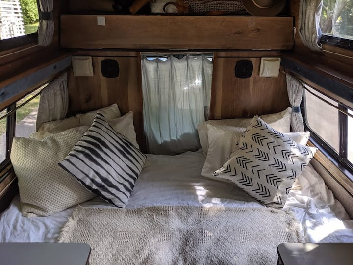 Cozy back yard Camper Van
