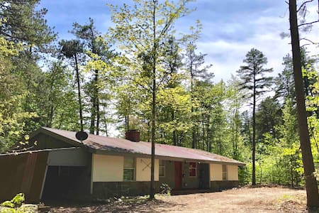 Northern Lakes Region Pet Friendly One-Level Home