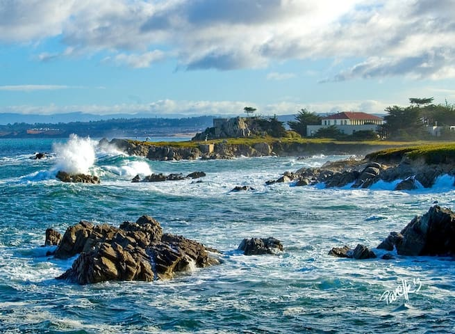 Breathtaking Views-Monterey Pebble Beach Retreat - Pacific Grove