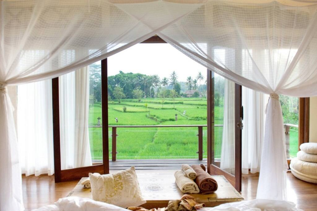 View from your bed