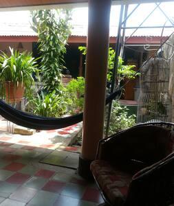 Casa Marluc