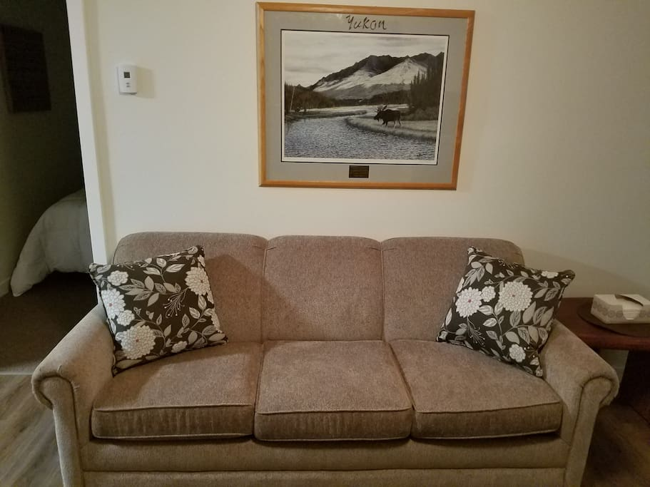New pull out sleeper sofa with memory foam mattress