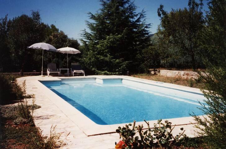 La Balsamine - Peymeinade - Villa
