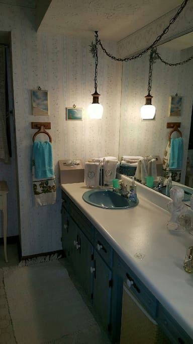 Very spacious guest bathroom with full shower and tub.