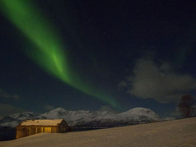 Lyngen Mountain Holidays - Jægervatnet - Huis