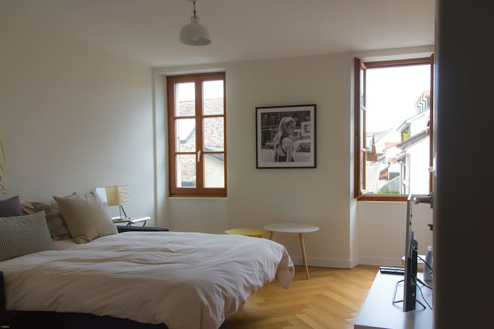 Cosy two-rooms apartment in Old Carouge (Geneva)