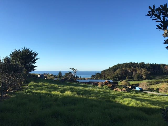 Aotearoa Ocean Beach - 334 Ocean Beach Rd
