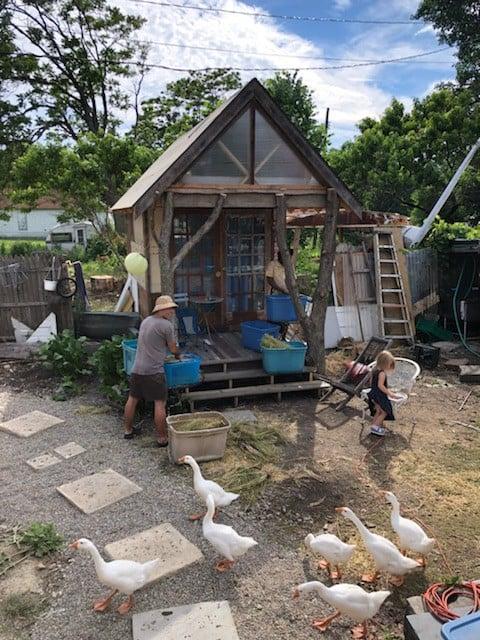 Brother Nature Farmhouse Cabin