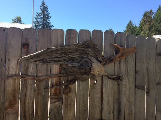 Driftwood Dragon