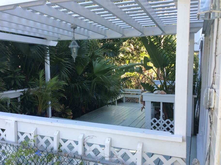 Open Deck with lush tropical palms.