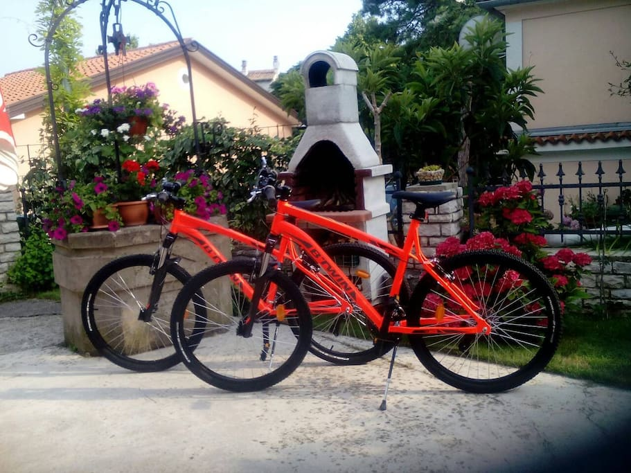 Two brand-new bikes at our guest's disposal