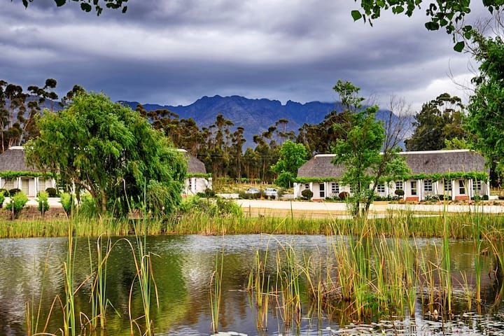 Rijk's Wine Estate and Hotel
