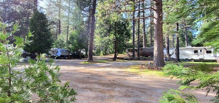 Campsite Tent RV Trailer Motorhome Site