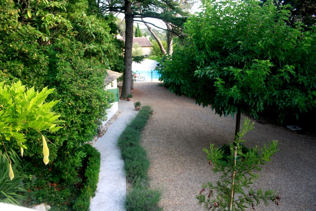 view of garden / pool from terrace