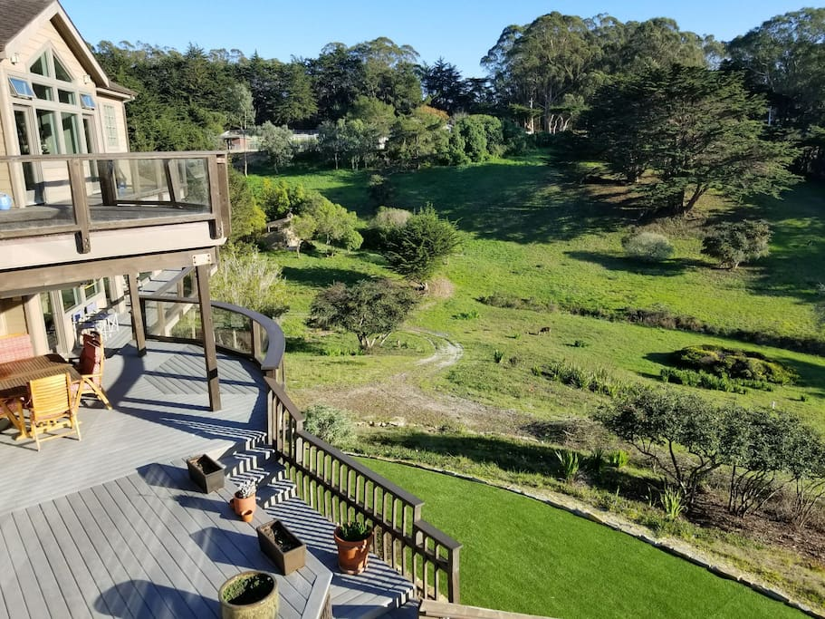 Expansive meadow views with resident wildlife!