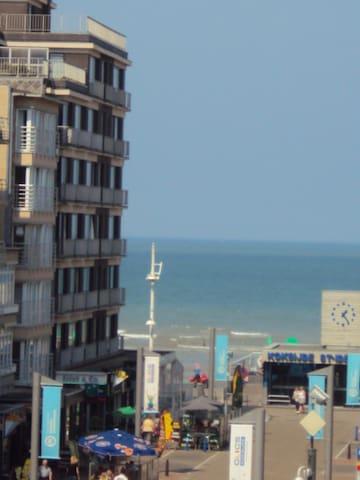 Zonnig app. Zeemeeuw 3de V 100m van het strand - Koksijde - Apartment