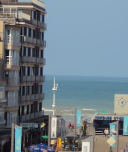 Zonnig app. Zeemeeuw 3de V 100m van het strand - Koksijde
