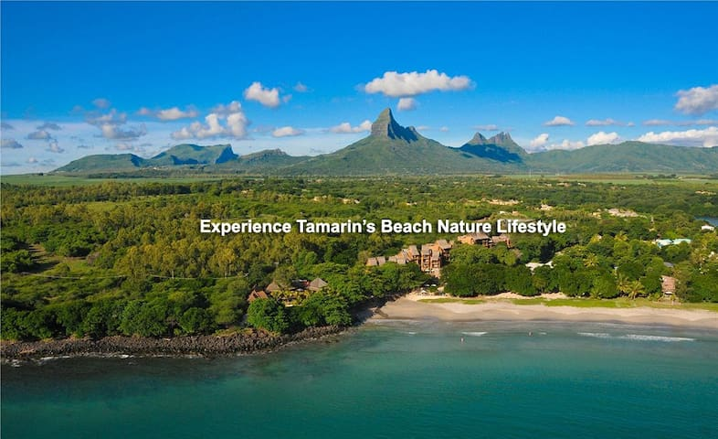 TamaRose Beach Apartment - Tamarin - Haus