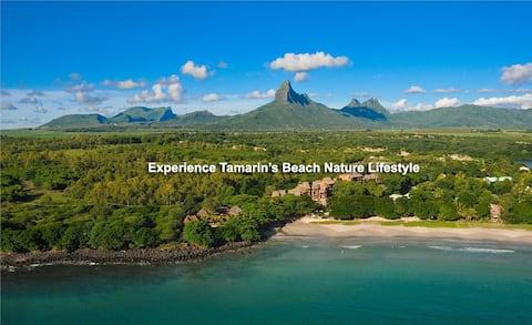 Квартира TamaRose Beach