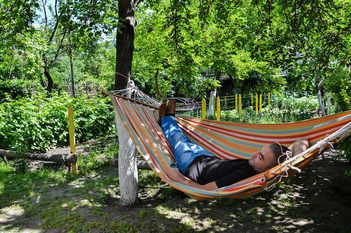 5 Bed Mixed Dorm Eden Hostel