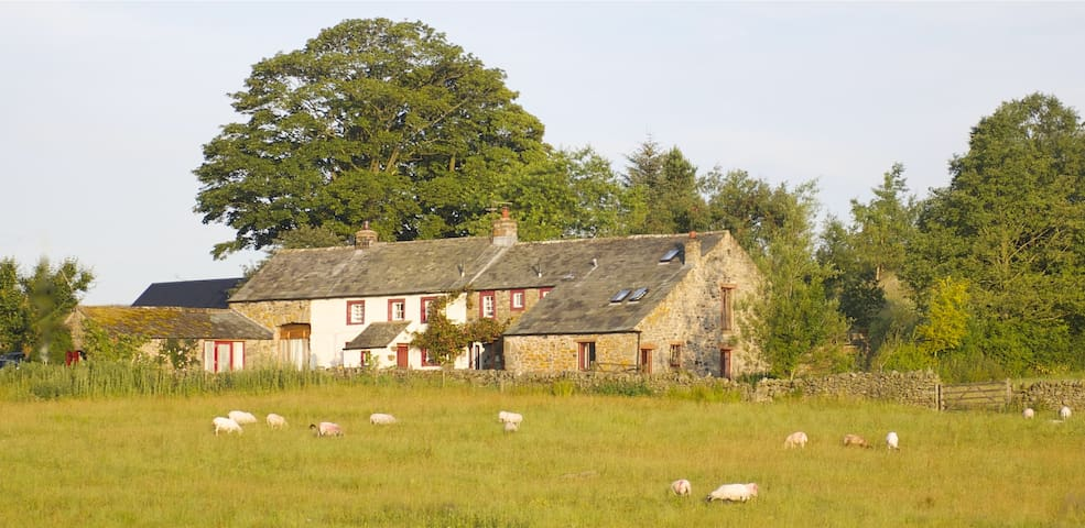 Low Todrigg - Cottage.