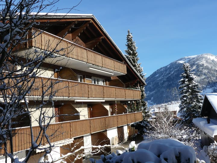 Spacious 6-bed apartment/Ferienwohnung near Gstaad