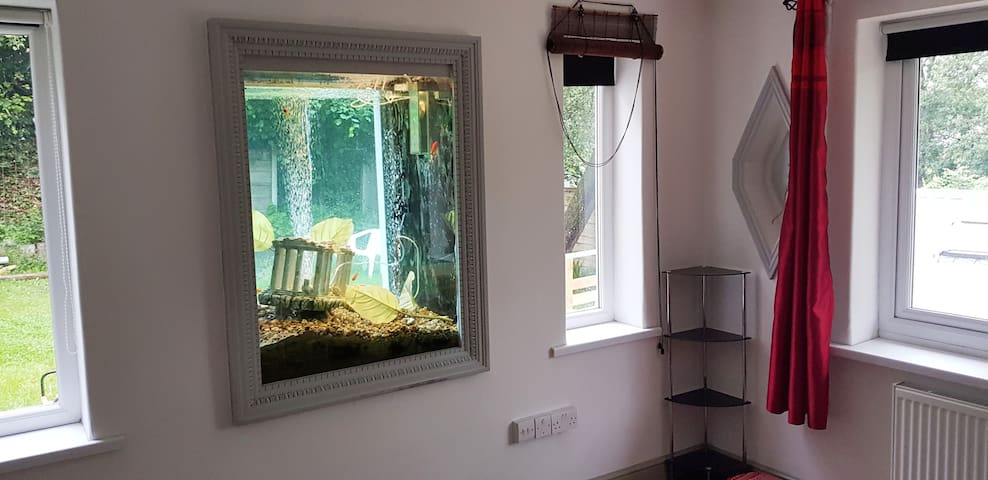 Amazing place with a massive fish tank