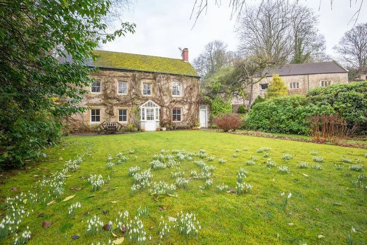 Charming 17th century English farmhouse- twin