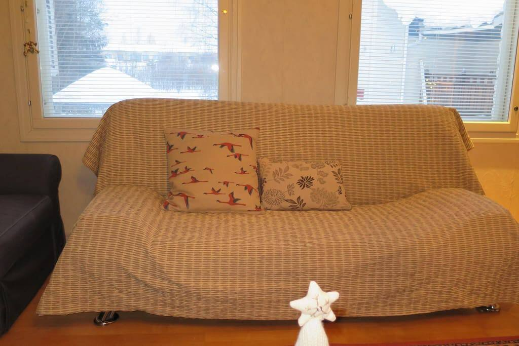 One of the sofa beds in the living room