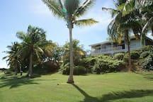 Appartement en villa duplex avec jardin, dans maison de style créole composé de 4 logements (extrémité gauche) sans vis à vis, superbe vue sur le golf international.