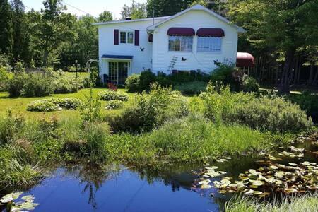 Jolie petite maison avec vue sur lac - Ház