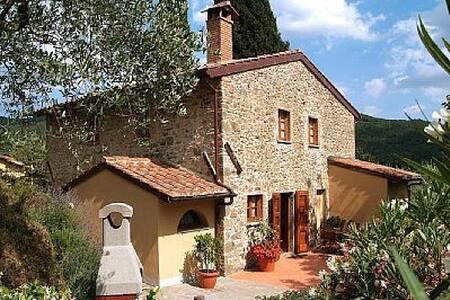 Villa laying on Tuscany hill - House