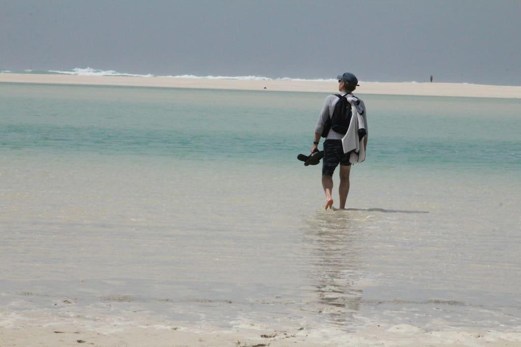 Endless beautiful beach walks