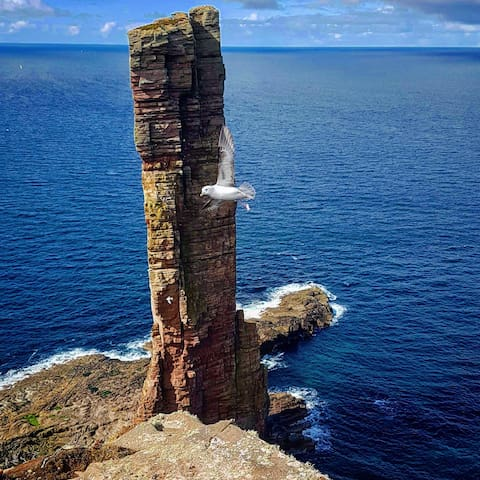 """The iconic """"Old man of Hoy"""""""