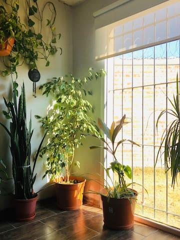 Casa en entorno tranquilo