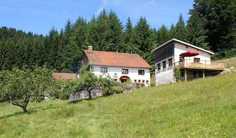 Maison en lisière de fôret, Hautes Vosges - Cleurie