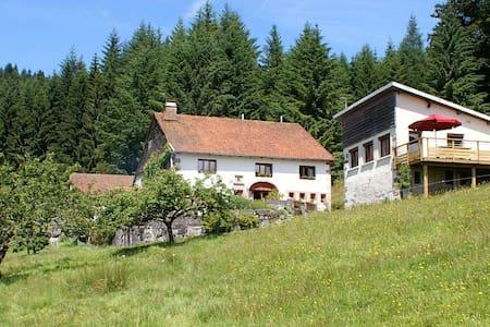 Maison en lisière de fôret, Hautes Vosges - Cleurie - 一軒家