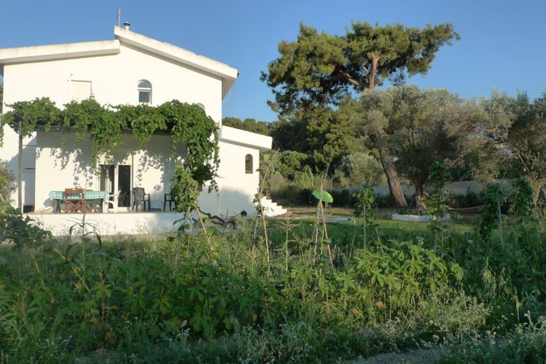 The Perivoli House