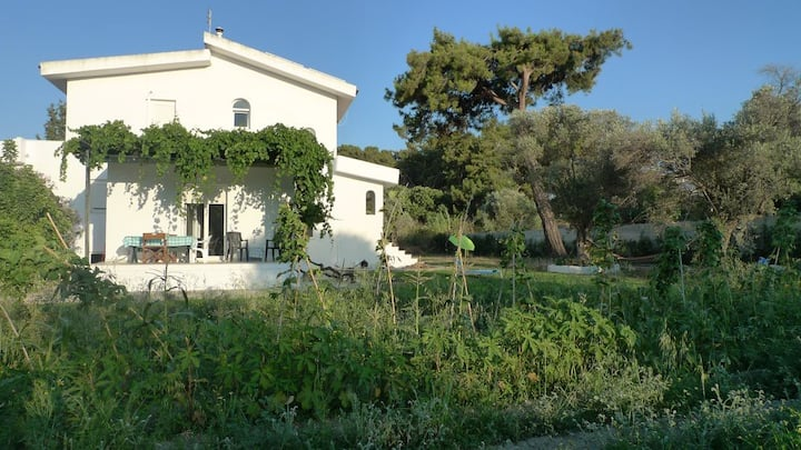 The Garden View House in Ialysos