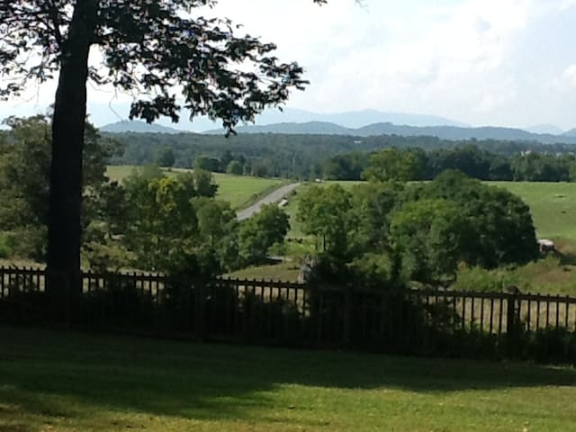 View from the back porch.