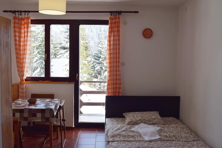Apartments Dviletov Kutak ❀ Comfy Studio Kopaonik❥